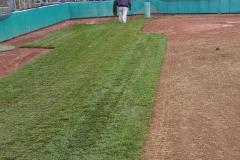 Motz natural commercial turpin baseball field