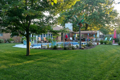 back-yard-pool-natural-turf-motz-farms