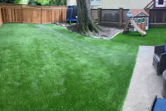 Backyard Synthetic Turf Two