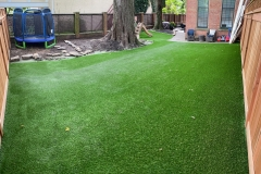 Backyard Synthetic Turf One