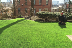 Motz Turf Farms synthetic turf yard install 6