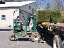 Motz Turf Farms employee on forklift