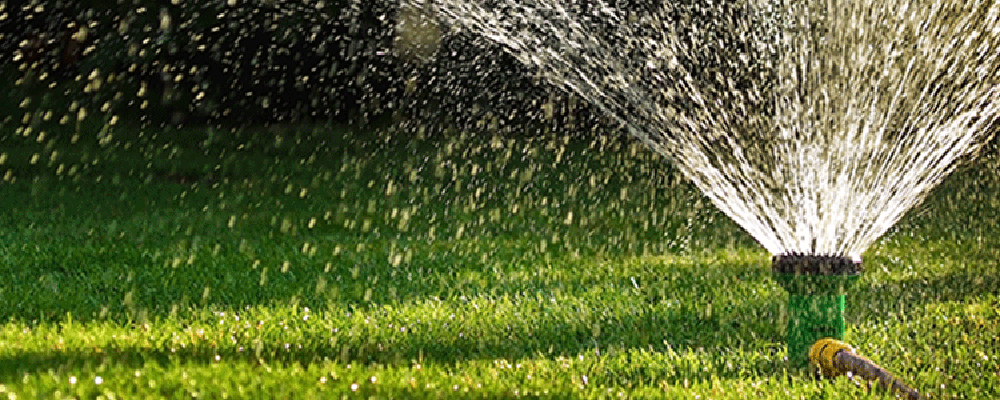 Watering Your New Sod